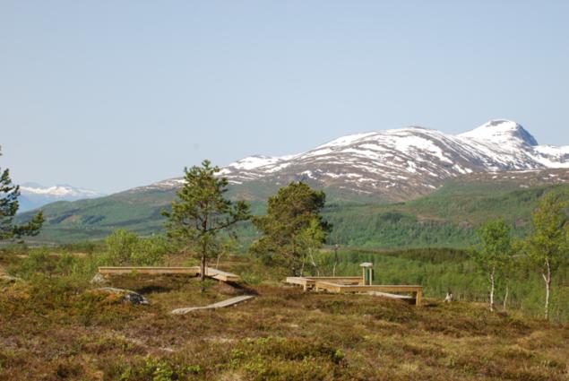 Bilde av bålplassen på Neverhaugheia