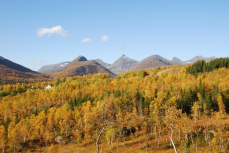 Valnesfjordalpene