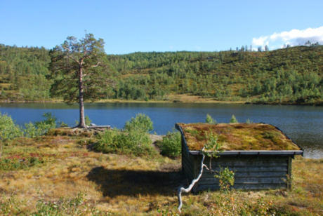 Gapahuk ved Svartvatnet