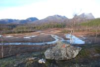 Myrterreng deler av stien mellom Fongenhytta og Hømmervatn
