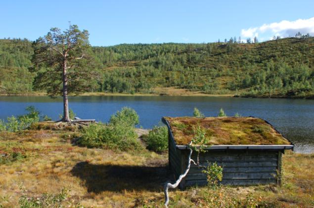 Bilde av gapahuk ved Svartvatnet
