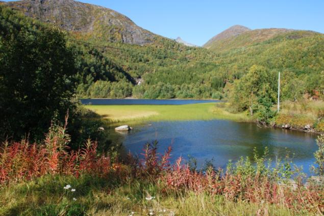Bilde fra Vestvatnli